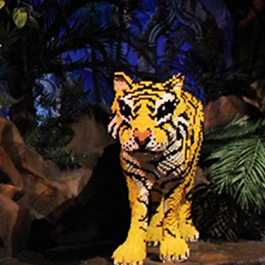 LEGO® Jungle Expedition | LEGOLAND Discovery Center